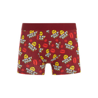 Boxer bordeaux poussiz red.