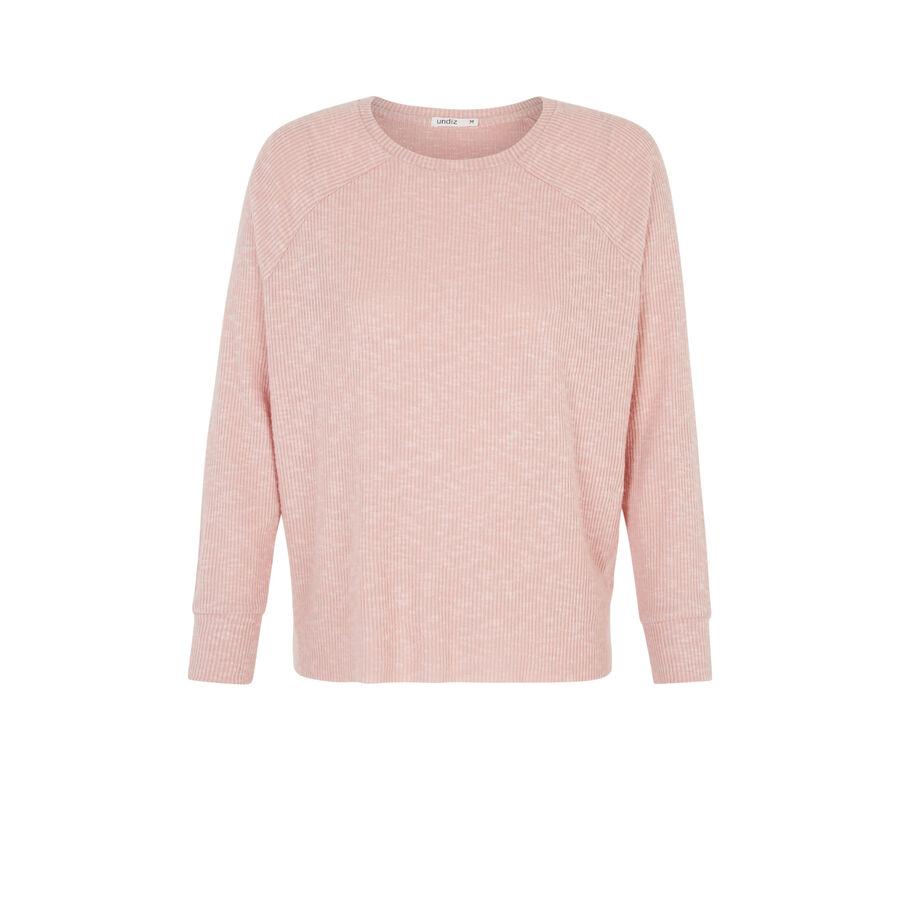 Pink paniliz sweater;