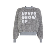 Nevergrowiz gray sweatshirt grey.