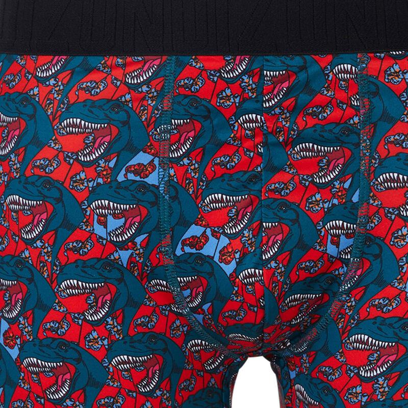 Dedeiz print boxer shorts;