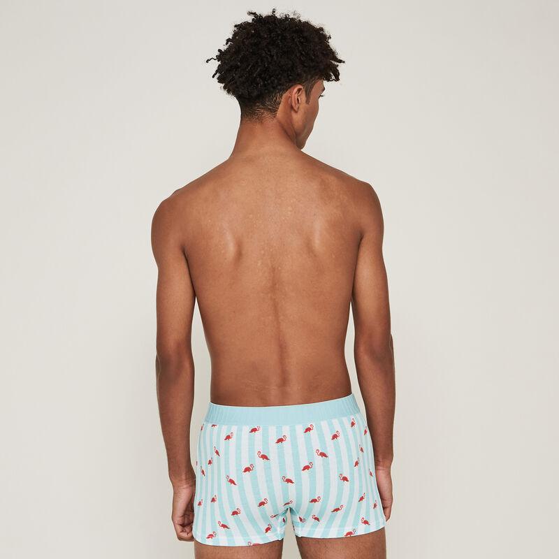 Pink flamingo print cotton boxers - blue ;