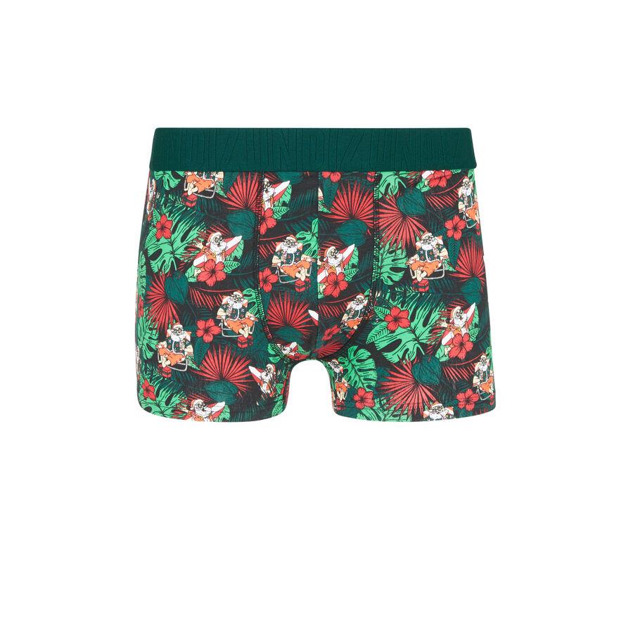Santafeuilliz green boxers;
