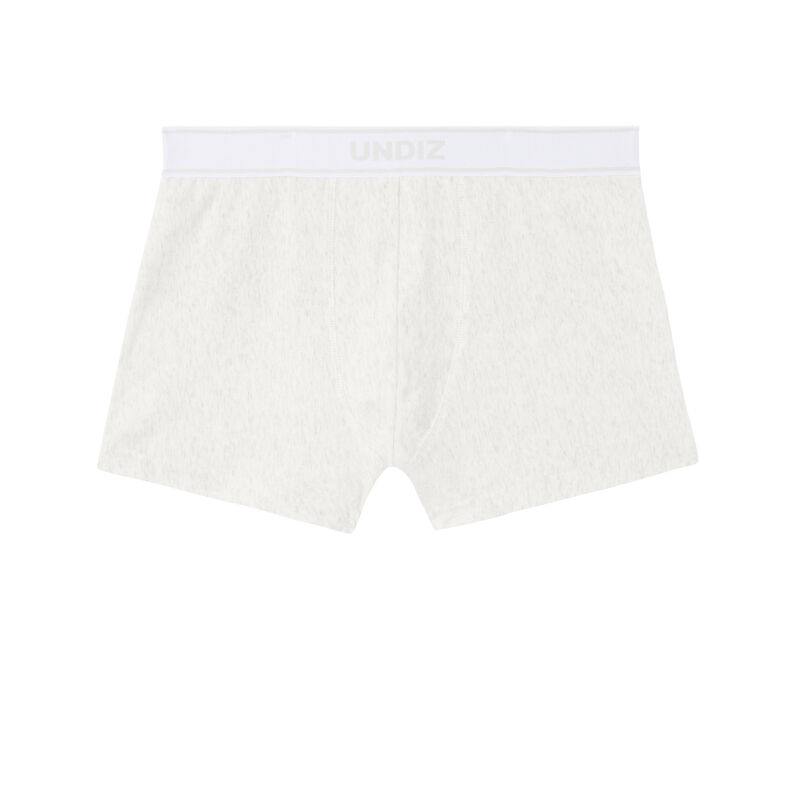 boxer with pleasure giver slogan - light grey;